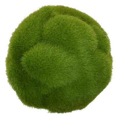 "Mood Moss 3.5"" Ball Faux (Set of 6) - Wayfair"