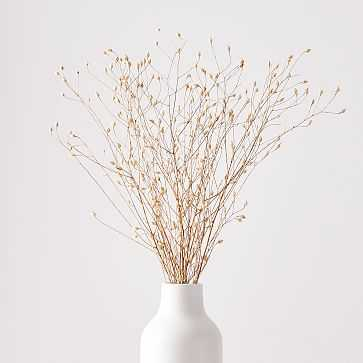 Dried Linum - West Elm