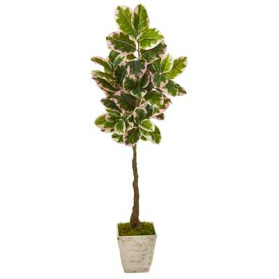 Nearly Natural 69in. Variegated Rubber Leaf Artificial Tree in Country White Planter (Real Touch) - Home Depot
