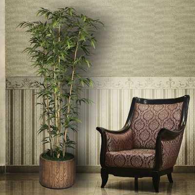 Floor Bamboo Tree - Wayfair
