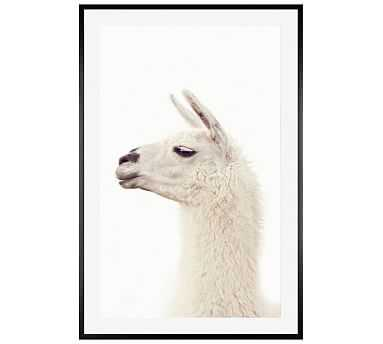 "Llama by Jennifer Meyers, 28 x 42"", Wood Gallery, Black, Mat - Pottery Barn"