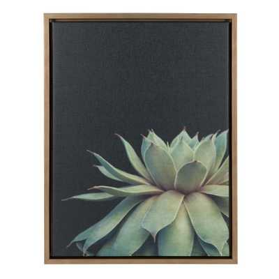 "Kate & Laurel 24""x18"" Sylvie Succulent Framed Wall Canvas Gold - Target"