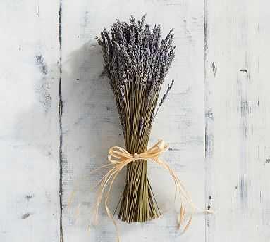 Live Lavender Sheaf - Pottery Barn