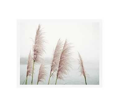 """Wild Pampas by Lupen Grainne, 20 x 16"""", Wood Gallery Frame, White, No Mat - Pottery Barn"""