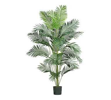 Faux Paradise Palm, 7' - Pottery Barn