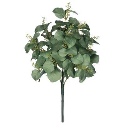 Eucalyptus Bush Stem - Wayfair