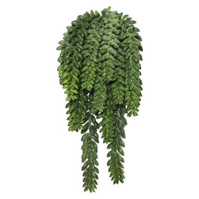 Artificial Donkey's Tail Bush (13) Green - Vickerman - Target