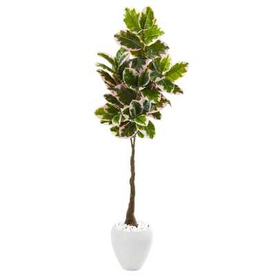 Nearly Natural 69in. Variegated Rubber Leaf Artificial Tree in White Planter (Real Touch) - Home Depot