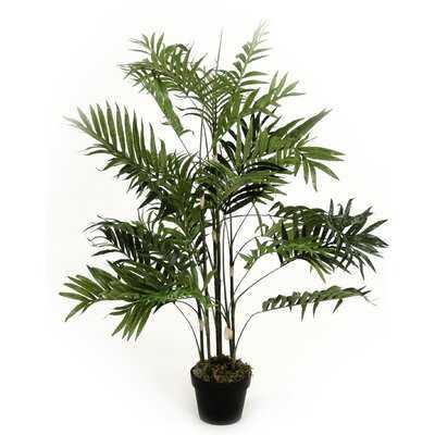 Faux Palm Plant in Pot - Wayfair