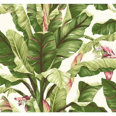 Tropics Banana Leaf Wallpaper, White/Light Yellow/Green To Dark Green/Dark Brown/Pink/Pink - Home Depot