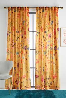 Layne Velvet Curtain-OCHRE - Anthropologie