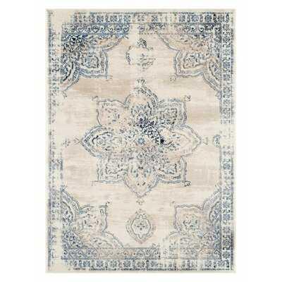 Whisenhunt 5934 Distressed Ivory 8 x 10 Area Rug Carpet Large New - Wayfair