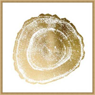 'Gold Foil Tree Ring III' Framed Graphic Art Print - Wayfair