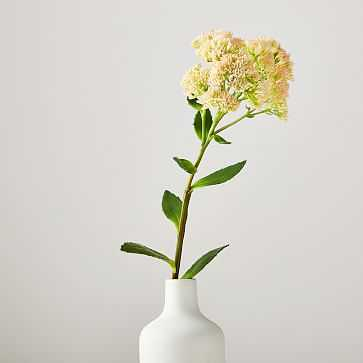 Faux Kalanchoe Stem - West Elm
