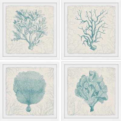 'Coral Group Quadriptych' 4 Piece Framed Graphic Art Print Set - Birch Lane