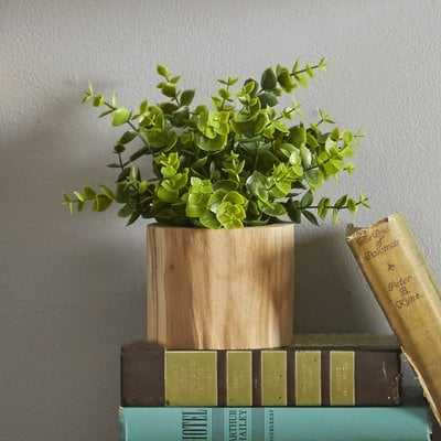 Faux Naturalist Eucalyptus Bonsai Plant  in Wood Planter - Wayfair