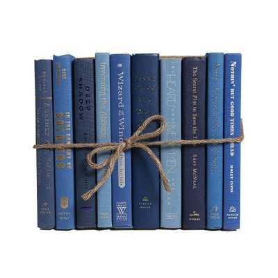 Authentic Decorative Books - By Color Modern Denim ColorPak (1 Linear Foot, 10-12 Books) - Wayfair