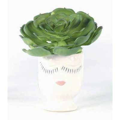 Succulent Plant in Decorative Vase - Wayfair