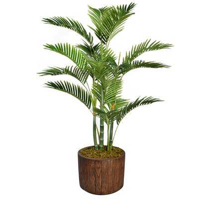 Floor Palm Tree in Planter - Wayfair