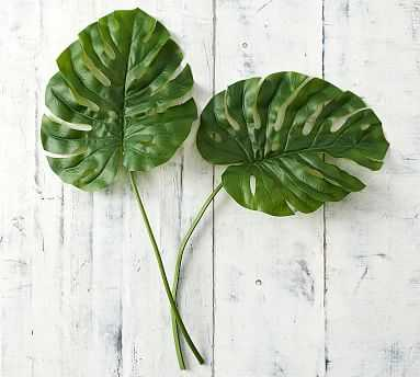 Philodendron Stem, Green, Large - Pottery Barn