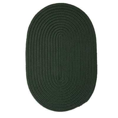 Mcintyre Dark Green Outdoor Area Rug - Wayfair