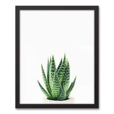 'Snake Plant' Framed Photograph On Canvas - Wayfair
