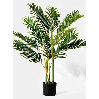 Bay Isle Home Golden Cane Palm Tree In Black Pot, Greenery For A Tropical Vibe, Measures 3 Feet Tall - Wayfair