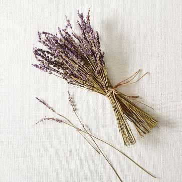 Lavender Bunch - West Elm