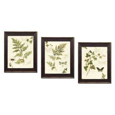 Classic Green and Brown Botanical Leaves, Dragonflies and Butterflies' Framed Graphic Art Print Set - Birch Lane