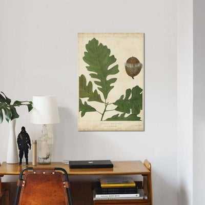 'Oak Leaves & Acorns III' Graphic Art Print on Canvas - Wayfair
