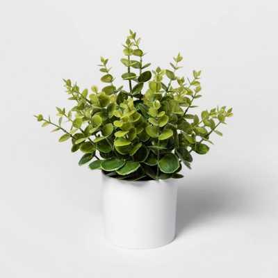 "12"" x 10"" Artificial Eucalyptus Arrangement in Pot Green/White - Project 62 - Target"