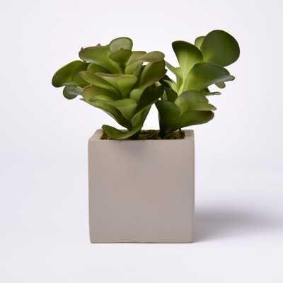 6.5 Artificial Succulent in Cement Pot - Lloyd & Hannah, Green - Target