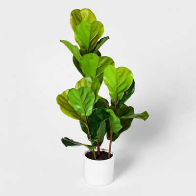 """33"""" x 16"""" Fiddle Lead Fig Plant In Pot Green/White - Threshold - Target"""