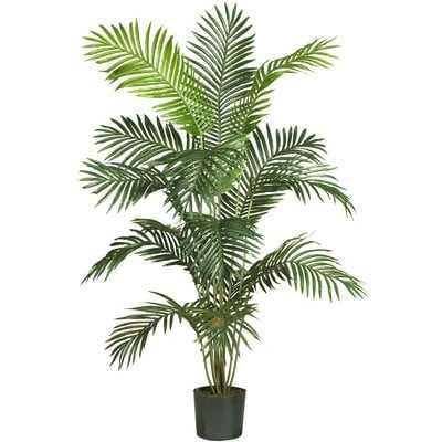 Black Hammock Floor Palm Tree in Pot - Wayfair
