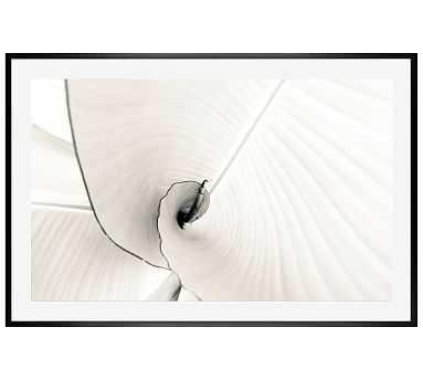 """Banana Leaves by Lupen Grainne, 42 x 28"""", Wood Gallery, Black, Mat - Pottery Barn"""