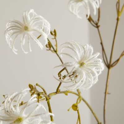Faux Clematis Seed Stem - Crate and Barrel