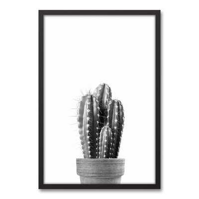 'Black And White Vintage Cactus' Framed Photograph On Canvas - Wayfair