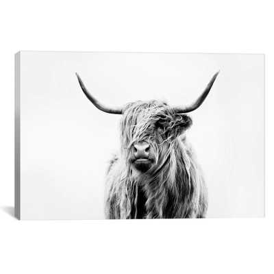 Portrait Of A Highland Cow by Dorit Fuhg Canvas Print 18 x 26 - iCanvas, Black/White - Target