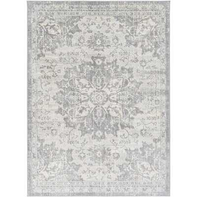 Swaney Traditional Silver Gray/Gray Area Rug - Wayfair