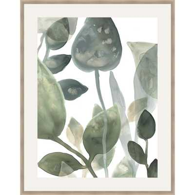 Somersethouse Publishing 30 in. x 24 in. 'water Leaves I' by June Erica Vess Framed Wall Art, Green - Home Depot