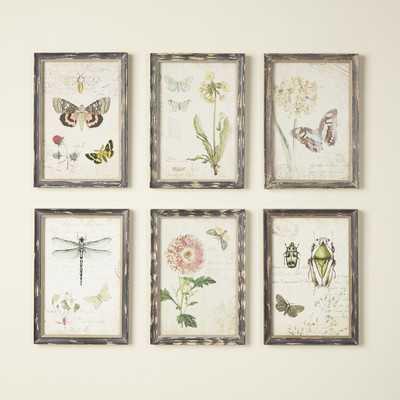 Gardener Wall Art - Wayfair