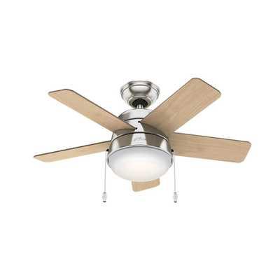 Hunter Tarrant 36 in. LED Indoor Brushed Nickel Ceiling Fan - Home Depot