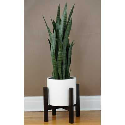 Branton Plant Stand - Wayfair
