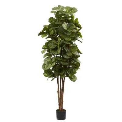 6 ft. Fiddle Leaf Fig Tree - Home Depot