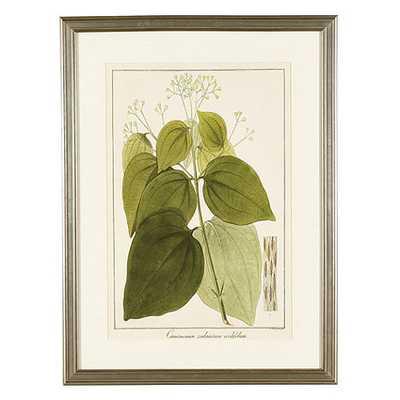 "Heines Leaf Art - Print IV - 21"" x 16"" - Antique silver frame - No Mat - Ballard Designs"