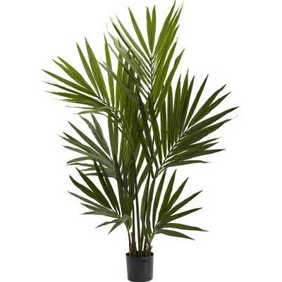 Kentia Palm Silk Tree in Pot - AllModern