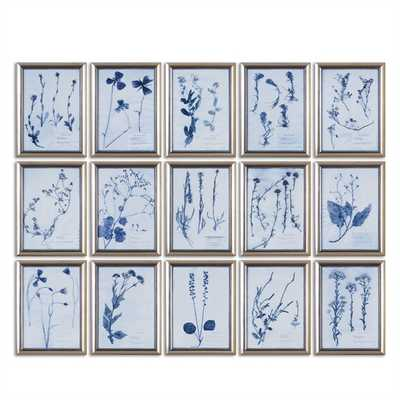Dried Flowers S/15 - 14x19 - Set of 15 - Hudsonhill Foundry