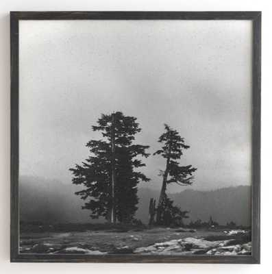 PACIFIC NORTHWEST Framed Wall Art -30'' x 30''-Weathered Black frame- no mat - Wander Print Co.