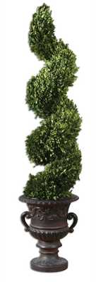 Preserved Boxwood, Spiral Topiary - Hudsonhill Foundry