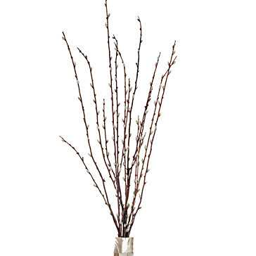 Faux Pussy Willow Spray - Set of 6 - Z Gallerie